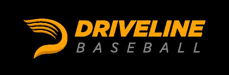 logo-driveline-768x254